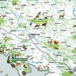 Miniatura okładki Polska Parki Narodowe – mapa dla dzieci, czytaj dalej.